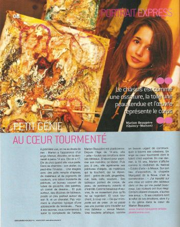 Seine et marne magazine  janvier 2009
